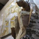 Vernissage Holz + Erde Rodriguez-Vetter, Hiemer 6