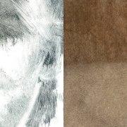 MEHR ALS WIR - Ausstellung von Eileen O'Rourke & Radu Cristian Sabatta